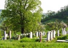 Plattelandsbegraafplaats stock afbeelding