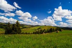 Plattelandsgebied in Karpatisch Stock Afbeelding