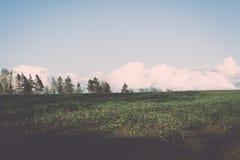 plattelandsgebieden in de vroege lente - uitstekend effect Stock Foto's