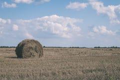 plattelandsgebieden in de vroege lente - uitstekende retro ziet eruit Stock Afbeeldingen