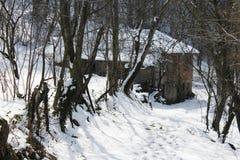plattelandshuisje Stock Afbeelding