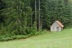 plattelandshuisje Stock Fotografie
