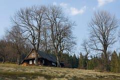 Plattelandshuisje in de bomen Royalty-vrije Stock Fotografie