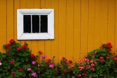 Plattelandshuisje in dorp Royalty-vrije Stock Foto