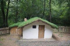 Plattelandshuisje en de schuur met groen dak van het gras in het bos royalty-vrije stock afbeelding