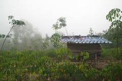 plattelandshuisje in het landbouwbedrijf Stock Afbeelding