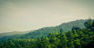 Plattelandshuisje in het midden van berg hoogste heuvel in puncakbogor royalty-vrije stock foto