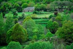 Plattelandshuisje in het platteland Stock Afbeelding