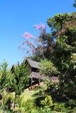 Plattelandshuisje op een heuvel met wilde de Kersenbloem van Himalayagebergte stock foto's