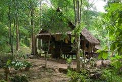 Plattelandshuisje in wildernis Stock Foto