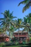 Plattelandshuisjes in een palmbosje. Varkala, Kerala, India. Stock Foto