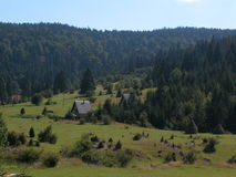 Plattelandshuisjes in het bergbos stock foto's