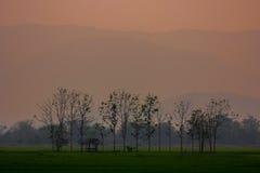 Plattelandslandschap stock fotografie