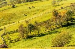 Plattelandslandschap in een Roemeense villlage Royalty-vrije Stock Foto's