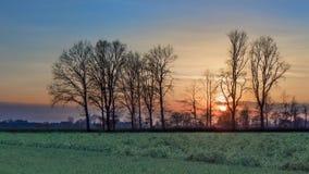 Plattelandslandschap met een rij van bomen en een kleurrijke zonsondergang, Weelde, België royalty-vrije stock afbeelding