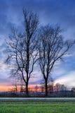 Plattelandslandschap met een rij van bomen en een kleurrijke zonsondergang, Weelde, België royalty-vrije stock afbeeldingen