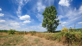 Plattelandslandschap met een zonnige hemel met dramatische wolkenvormen, Rafels, België stock fotografie