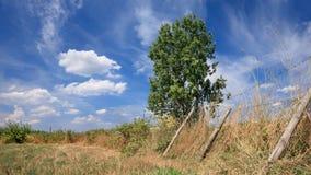 Plattelandslandschap met een zonnige hemel met dramatische wolkenvormen, Rafels, België royalty-vrije stock foto's