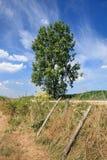 Plattelandslandschap met een zonnige hemel met dramatische wolkenvormen, Rafels, België royalty-vrije stock afbeeldingen