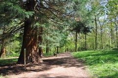 Plattelandslandschap van Herefordshire, Engeland Royalty-vrije Stock Fotografie
