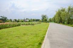 Plattelandsweg aan klein dorp in de bewolkte zomer Royalty-vrije Stock Foto's
