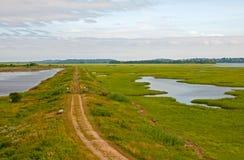 Plattelandsweg door gebieden en vijvers Royalty-vrije Stock Foto's