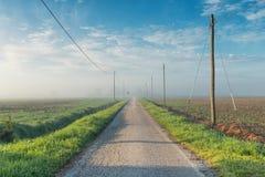 Plattelandsweg in een mistige de lenteochtend stock fotografie