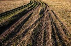 Plattelandsweg met gras wordt overwoekerd dat Royalty-vrije Stock Foto