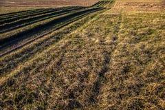 Plattelandsweg met gras wordt overwoekerd dat Royalty-vrije Stock Afbeeldingen