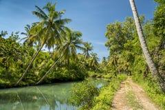 Plattelandsweg met kokospalmen van Indonesië royalty-vrije stock afbeelding