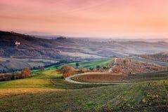 Plattelandsweg, Umbrië, Italië Royalty-vrije Stock Afbeelding