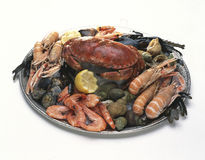 platter θαλασσινά στοκ φωτογραφίες
