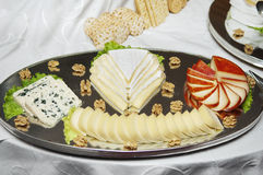 Platter of cheese Royalty Free Stock Photos