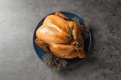 Platter of cooked turkey with cranberry and fir tree branches on grey background. Top view stock image