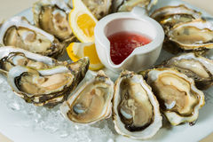 A platter of fresh organic raw oysters on ice Stock Image