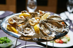 Platter of fresh organic raw oysters on ice. A platter of fresh organic raw oysters on ice at restaurant Royalty Free Stock Photography