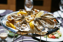 Platter of fresh organic raw oysters on ice. A platter of fresh organic raw oysters on ice at restaurant Stock Photography