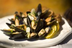 Platter of Mussels Royalty Free Stock Photography
