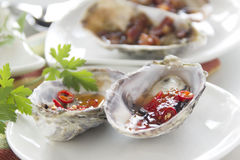 Platter Of Oysters Stock Images