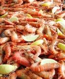 Platter of prawn shrimps with lemon. Seafood platter filled with prawn shrimps with lemon wedges Stock Photos