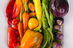 Platter of Rainbow Assorted Vegetables macro shot Stock Photography