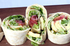 platter tortilla περικάλυμμα Στοκ φωτογραφία με δικαίωμα ελεύθερης χρήσης