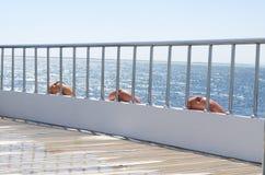Plattform auf dem Heck der Yacht an einem sonnigen Tag und schönen blauen an einem Meerwasser Lizenzfreies Stockbild
