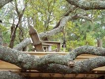 Plattform in einem Baum Lizenzfreie Stockfotos