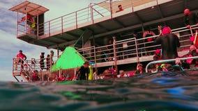 Plattform för marin- liv i den stora barriärrevet i Queensland, Australien arkivfilmer