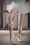 plattform för pointes för ballerinaskönhetben Fotografering för Bildbyråer