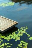 Plattform mit Wasserlilien Stockbild