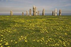 plattform stenar för fält Arkivbilder