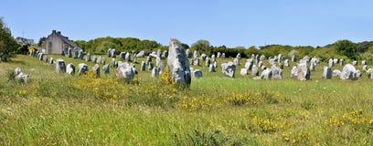 Plattform stenar på Carnac i Frankrike Arkivfoton