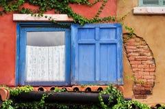 Plattiertes und blaues Fenster des Efeus im alten Haus Stockbild